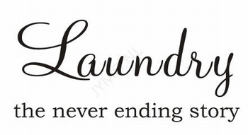 Laundry the never ending ...