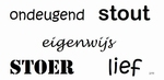 Lief stout stoer Ondeugend